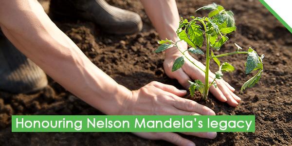 Honouring Nelson Mandela's legacy
